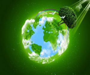 ¿Qué es la ecología?¿Qué estudia la ecología?