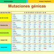 tipos-de-mutaciones