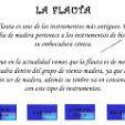 clasificacion de flauta