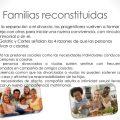 familias reconstituidas
